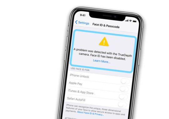 iPhone X Face ID solution