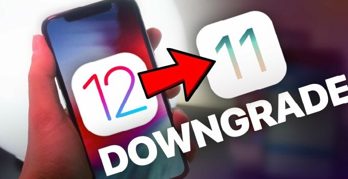 Downgrade iOS 12.0 to iOS 11: