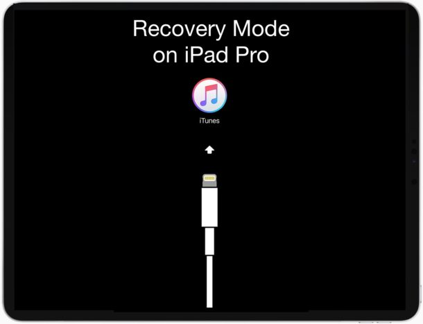 recovery mode on ipad pro